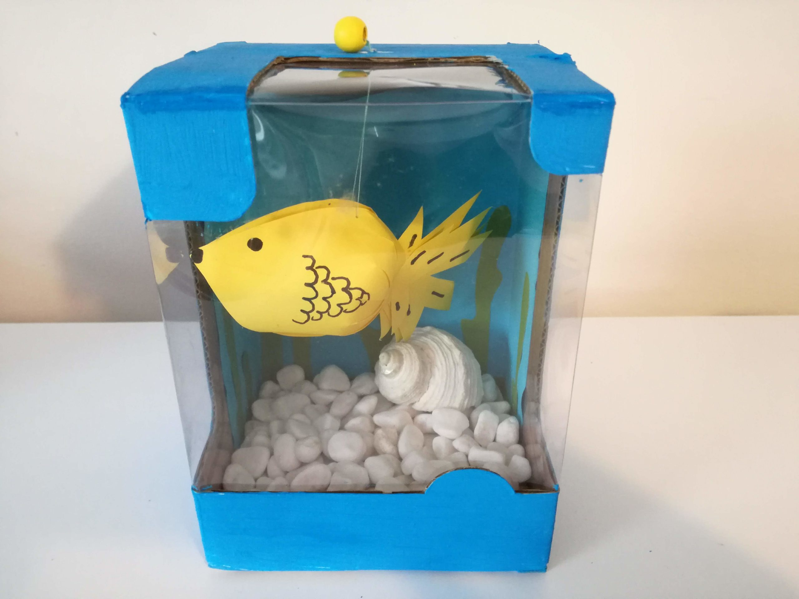 Akwarium z pudełka